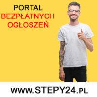 Polska firma w Niemczech